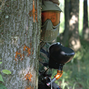 Person with a paintball gun and mask peeking around a tree trunk.
