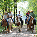 A group of five riding horses on a trail through the woods.